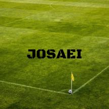 Josaei